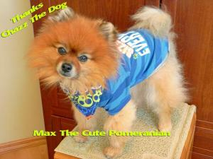 MaxtheCutePom
