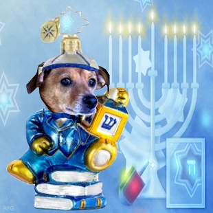ChazzTheDog in his Chanukah finery!