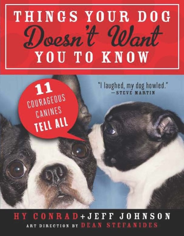 Things YourDogDoesn't Want YouToKnow