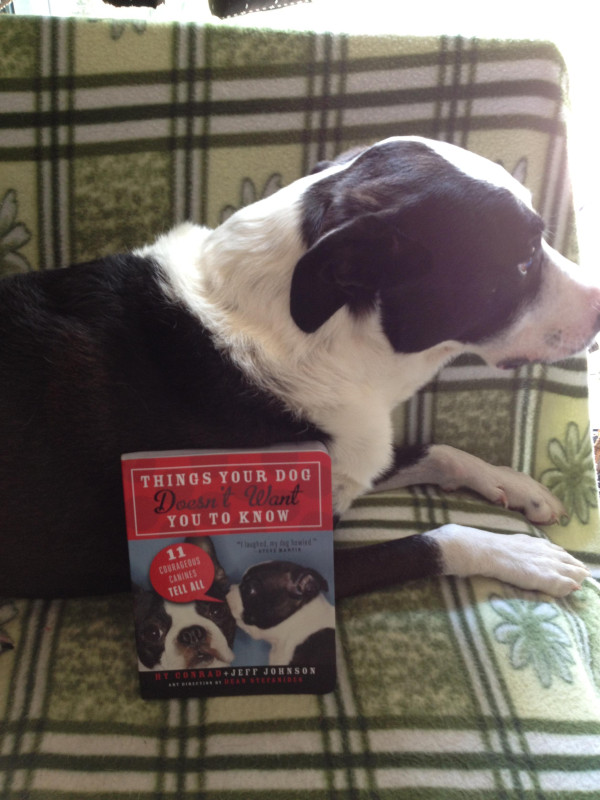 Thomas waiting for his Nan to read from his new book..Things Your Dog Doesn't Want You To Know