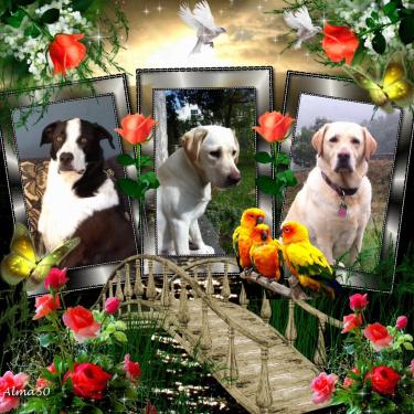 Thomas, Winnie, Keely